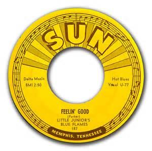FEELIN' GOOD:FUSSIN N FIGHTIN' BLUES - LITTLE JUNIOR BLUE FLAMES - New Releases Vinyl, SUN